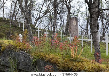 Autumn at the Cemetery.