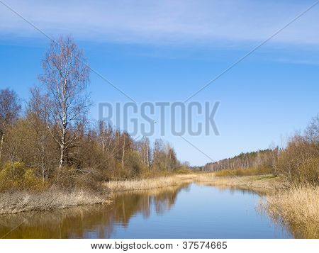 Small Small River Against The Blue Sky And Clearing Up Vegetation In The Spring.