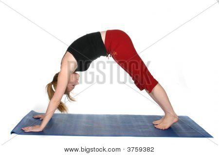 Woman Demonstrating Downward Facing Dog Yoga Position