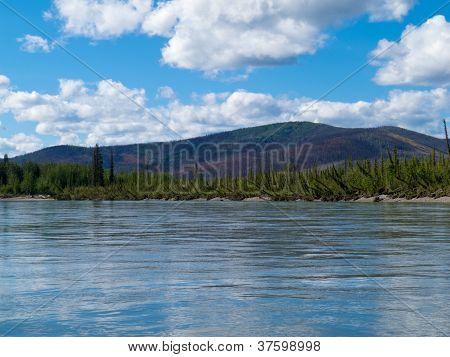 Taiga hills at Steward River near town of Mayo
