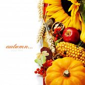 image of fall decorations  - Harvested pumpkins with fall leaves - JPG