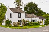 picture of english cottage garden  - A traditional whitewashed cottage in the English lake District - JPG
