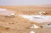 pic of tozeur  - Desert scenery at the salt lake of Chott el - JPG