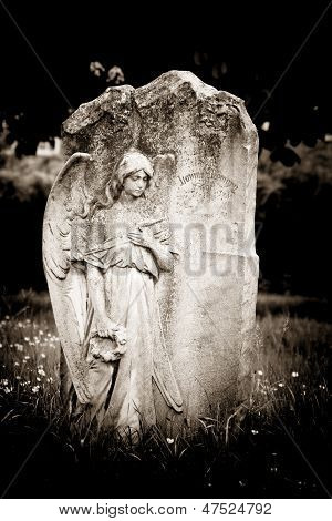 Angel On Blank Headstone