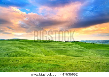 Tuscany Sunset, Cypress Trees And Green Fields. San Quirico Orcia, Italy.