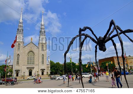 Notre-Dame Cathedral Basilica and Maman