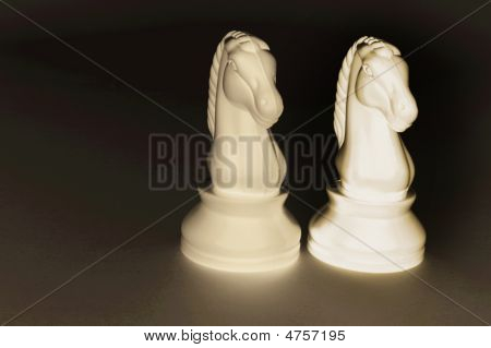 Two Knight Chess Pieces
