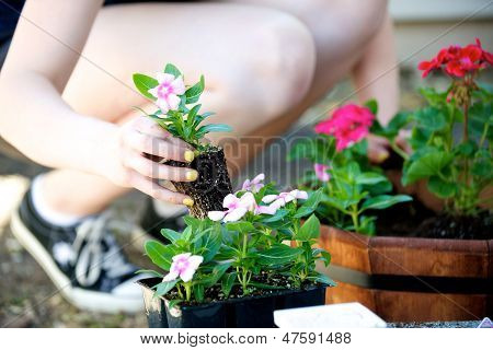 Kneeling Woman Plants A Pink Flower