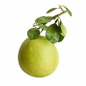 stock photo of pamelo  - Pomelo or Chinese grapefruit isolated over white - JPG