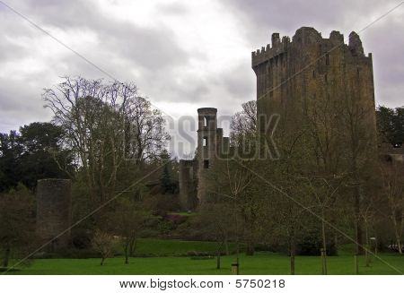 Blarney Catle