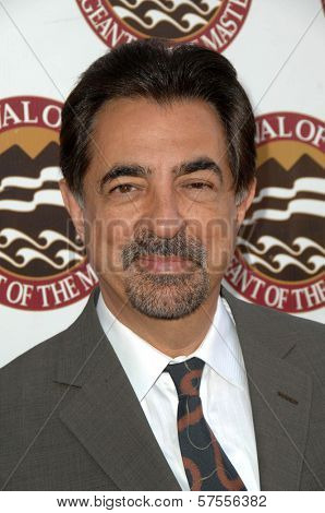 Joe Mantegna at the 11th Annual Festival of Arts Pageant of the Masters. Private Location, Long Beach, CA. 08-29-09