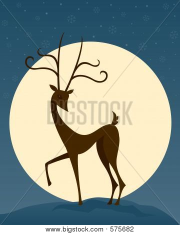 Reindeer In Night