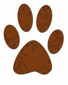Dog Paw Print poster