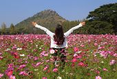 stock photo of cosmos flowers  - woman in cosmos flower field with mountain background - JPG