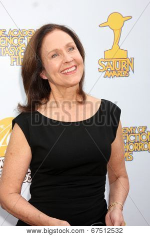 LOS ANGELES - JUN 26:  Erin Gray at the 40th Saturn Awards at the The Castaways on June 26, 2014 in Burbank, CA