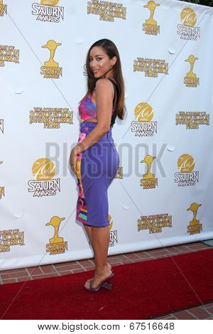 LOS ANGELES - JUN 26:  Korrina Rico at the 40th Saturn Awards at the The Castaways on June 26, 2014 in Burbank, CA