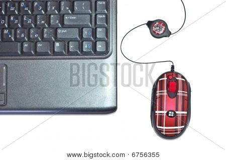 Mouse With Computer