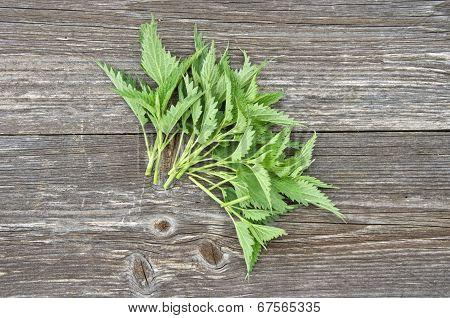 Fresh Nettle Leaf On Wooden Background