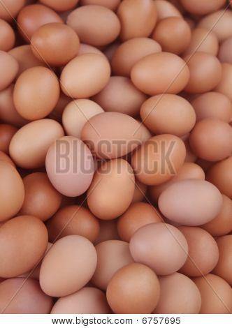 egg pattern f