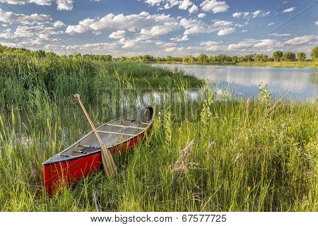 red canoe with a wooden paddle on lake shore with green vegetation