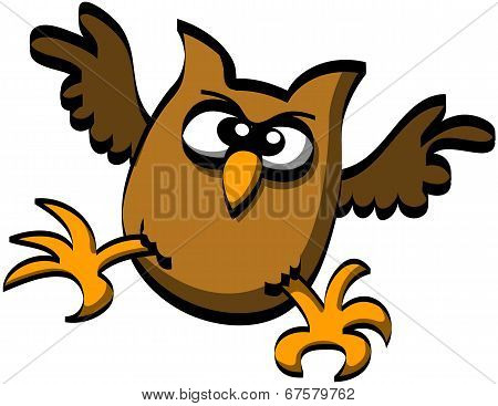 Chubby owl attacking