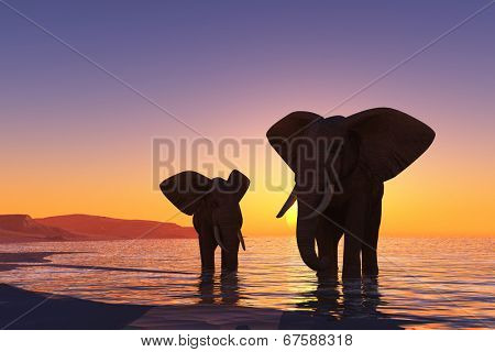Silhouettes of elephants on the beach.