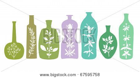 Aromatic Herbs In Bottles