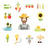 picture of scarecrow  - Set of colorful vector farm icons for cultivating grains  fruit and vegetables with a farmer   peas  carrots peppers  pear  apple  sunflower  orchard  fields  corn  hay  scarecrow and planting seed - JPG