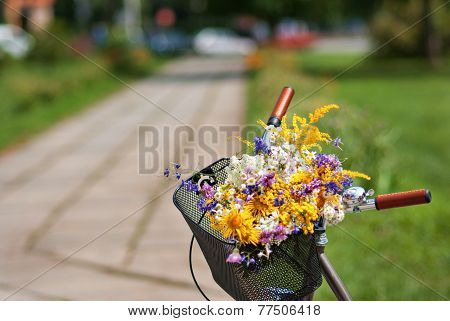 Basket With Daisies In Sunny Day