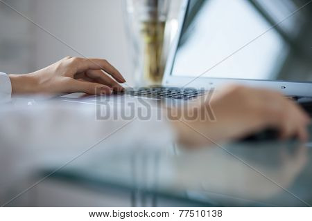 Woman's Hand Using Cordless Mouse On Glass Table