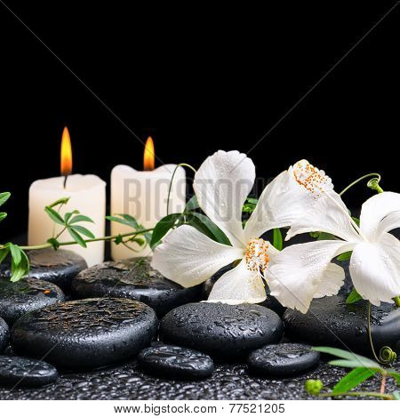 Beautiful Spa Concept Of Blooming White Hibiscus, Twig With Tendril Passionflower And Candles On Zen