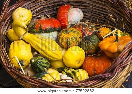 Vegetables on Market, Italy