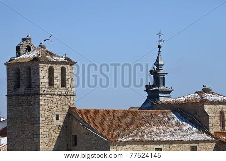 Stork Nest on the Church Roof
