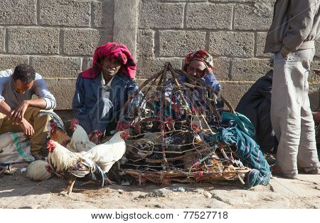 Market Animals In Ethiopia