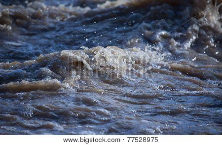 Turbid Water