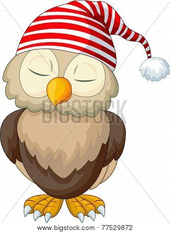 Cartoon owl sleeping