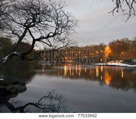 Van Cortlandt Park At Night In Winter