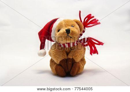 Plushy Bear