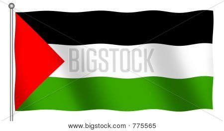 Flag of Palestine Waving