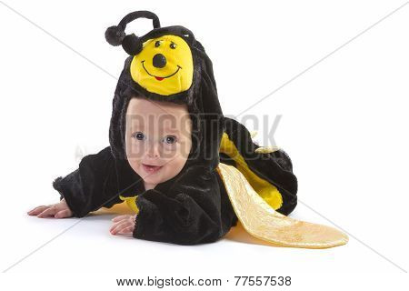 Baby Boy Dressed Up Like Bee