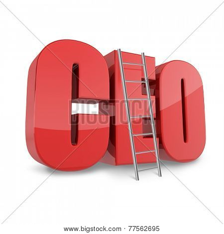 Ceo business concept with CEO abbreviation and ledder.