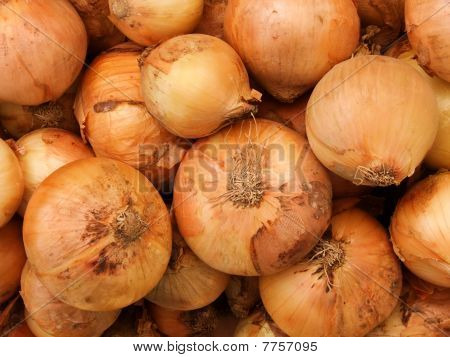 Vegetables  Onions