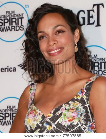 LOS ANGELES - NOV 25:  Rosario Dawson at the Film Independent Spirit Award Nominations at the W Hotel Hollywood on November 25, 2014 in Los Angeles, CA