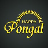 picture of pongal  - South Indian harvesting festival celebrations poster or banner design with shiny text Happy Pongal - JPG
