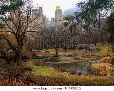 Central Park in Color
