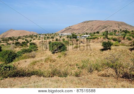 Farm Field On The Island Fogo