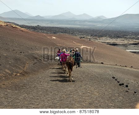 TIMANFAYA - MARCH 31: Tourists taking a camel ride on March 31, 2015 in Timanfaya National Park, Lanzarote island, Spain. The parkland is entirely made up of volcanic soil.