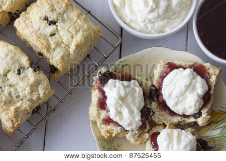Sultana Scones with Jam and Cream Top View