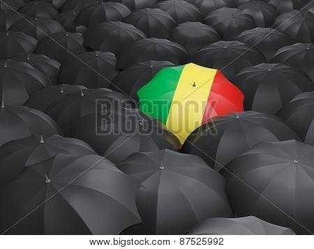 Umbrella With Flag Of Republic Of The Congo