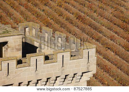 Antique Castle Battlement And Vineyard In Olite, Navarra. Spain